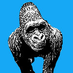 Gorilla Silverback Handsprayed Stencil on Canvas by Art By People - print