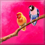 Love Birds, Pink Blue and Orange, Canvas Art by Mellie Thorp - print
