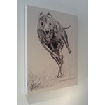 Greyhound Dog Racing, Canvas Art Picture by Brian Hollingworth - print