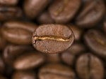 Top view of coffee beans Poster Art Print by Assaf Frank