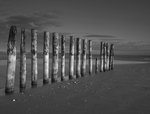 Fine Art Print of Groynes at ast head beach, West Susex coast by Assaf Frank