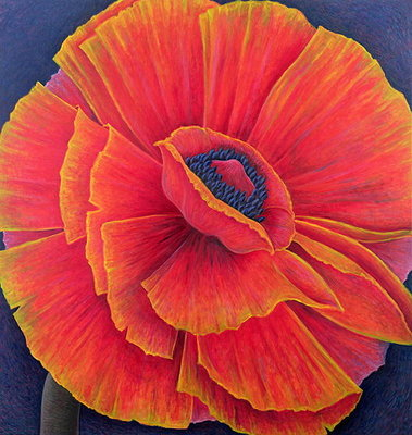 Big Poppy, 2003 Poster Art Print by Ruth Addinall