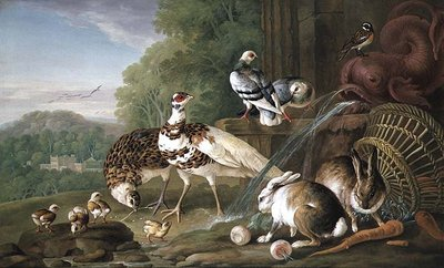 Birds and Rabbits by Pieter Casteels - print