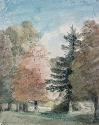 Study of Trees in a Park (watercolour) by John Constable - print