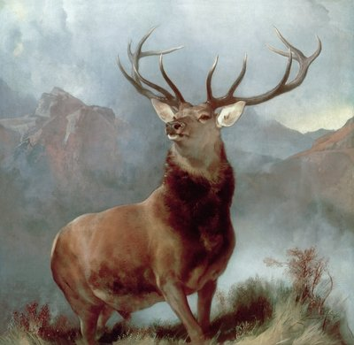 Monarch of the Glen, 1851 (oil on canvas) by Sir Edwin Landseer - print