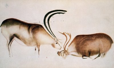 Male and female deer, Magdalenian school, c.13000 BC (cave painting) by Paleolithic - print