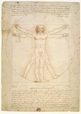 The Proportions of the human figure Poster Art Print by Leonardo da Vinci