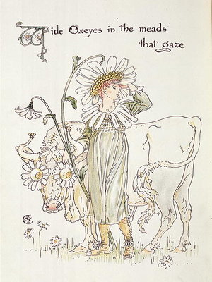 'Wild Oxeyes in Meads that Gaze', illustration to 'Flora's Feast, A Masque of Flowers' by Walter Crane - print