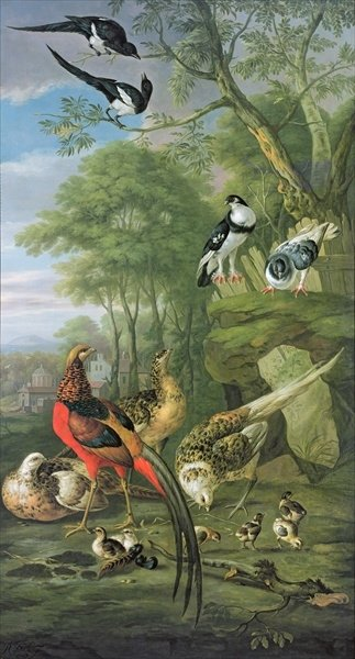 Cock pheasant, hen pheasant and chicks and other birds in a classical landscape Poster Art Print by Pieter Casteels