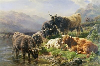 Highland Cattle Poster Art Print by William Watson