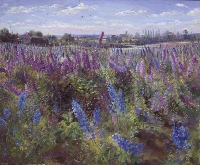 Delphinium Field and Church by Timothy Easton - print