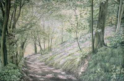Fine Art Print of Spring in Pembrokeshire by Jane Carpanini