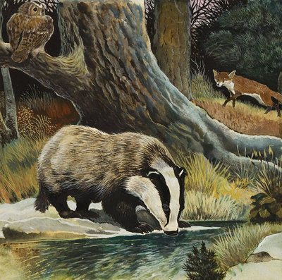 Fine Art Print of Badger, Fox, Owl and Mouse by Anonymous