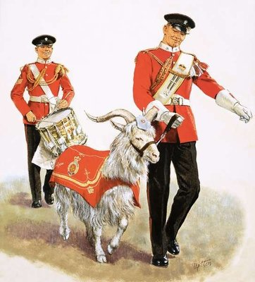 An army mascot goat Poster Art Print by Clive Uptton