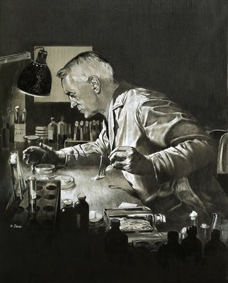 Fine Art Print of Alexander Fleming and the discovery of penicillin by Neville Dear