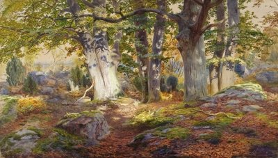 Autumn Sunlight after Rain, Fontainebleau Poster Art Print by Andrew MacCallum