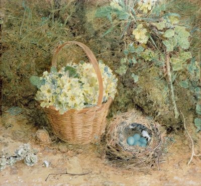 Chaffinch's Nest with Primroses Poster Art Print by William Henry Hunt