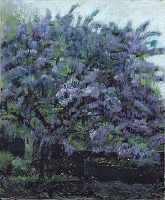 Ceanothus Tree No.1, 2004 Poster Art Print by Ben Henriques
