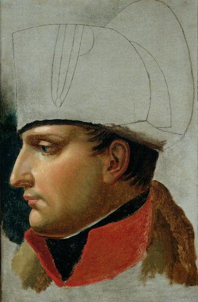 Fine Art Print of Unfinished Portrait of Napoleon I by Anne Louis Girodet de Roucy-Trioson
