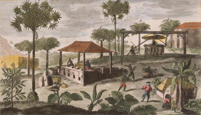 Sugar Refinery, illustration from 'Histoire des Antilles' by Jean Baptiste Labat Poster Art Print by French School