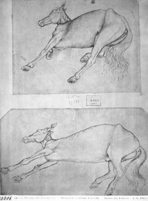 Dead horses, from the The Vallardi Album (pen & ink on paper) (b/w photo) by Antonio Pisanello - print