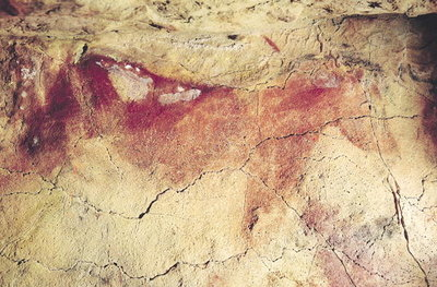 Representation of an animal, c.15000 BC (cave painting) by Prehistoric - print