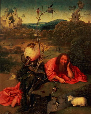St. John the Baptist in Meditation (oil on panel) by Hieronymus Bosch - print