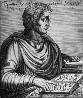 Pliny the Elder (23-79 AD) (engraving) by French School - print