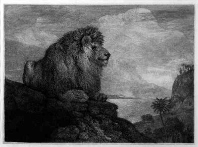 A Lion (A Lion Resting on a Rock) engraved by the artist (etching) by George Stubbs - print
