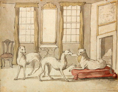 Three Greyhounds in a room (graphite and pen & ink on paper) by Pieter Casteels - print