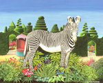 Zebra in a Garden, 1977 Poster Art Print by Anthony Southcombe