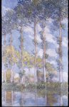 The Poplars, 1881 Poster Art Print by Claude Monet