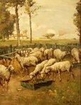 Fine Art Print of The Sheep Fold by William McBride