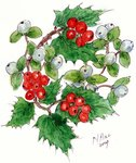 Mistletoe and holly wreath Poster Art Print by Stanley Cooke
