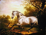 White Stallion in a Landscape Poster Art Print by John Frederick Herring Snr