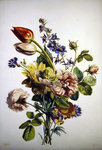 Study of a bunch of flowers, 1817 Poster Art Print by Jan Brueghel