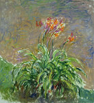 Fine Art Print of Hemerocallis, 1914-17 by Claude Monet