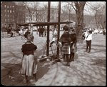 View of children playing on playground equipment at Tompkins Square Park, on Arbor Day, New York, 1904 Poster Art Print by Byron Company