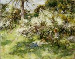 Fine Art Print of Sloe Blossom by William Stewart MacGeorge