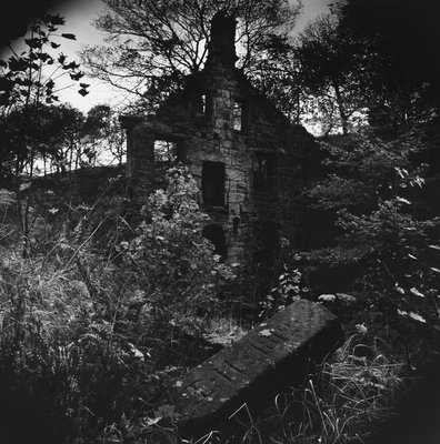 Staups Mill by Fay Godwin - print