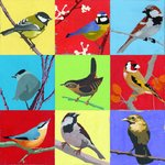 Garden Birds by Andy Bridge - print