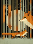 Midnight Foxes by Dieter Braun - print