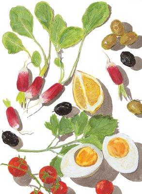 Summer Cooking by Elizabeth David, Frontis illustration by Sophie MacCarthy - print