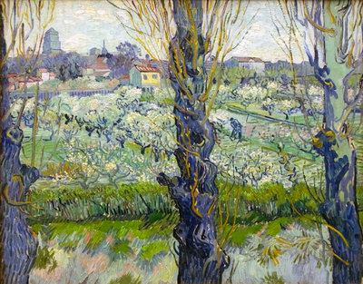 Orchard in Blossom with View of Arles Poster Art Print by Vincent Van Gogh