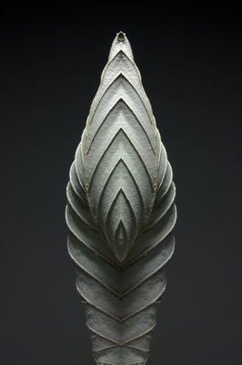 Leaf Sculptures 1 Poster Art Print by Annie Walters