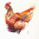 Chicken Sketch