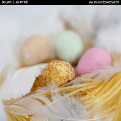 Fine Art Print of Easter Nest by Jane Ann Butler