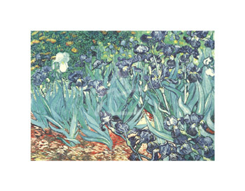 Irises in the Garden by Vincent Van Gogh - print