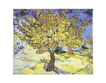 Mulberry Tree by Vincent Van Gogh - print