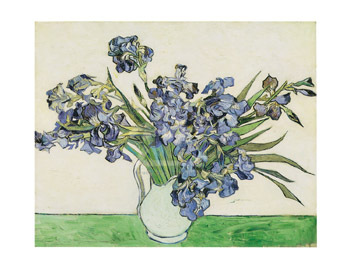 Irises by Vincent Van Gogh - print